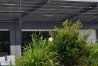 Campbell Town Wire fencing 20